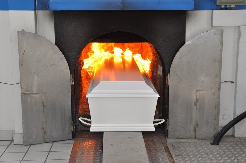 скачать торрент крематорий - фото 5