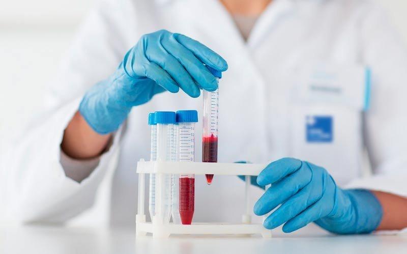 Кровь животных несомненно поможет лечить онкологические заболевания