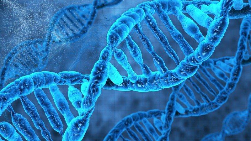 Компьютерный анализ ДНК несомненно поможет найти редкие заболевания— Ученые