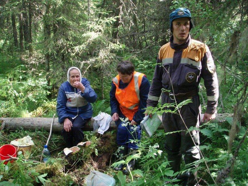 ВКировской области пропали еще 4 грибника