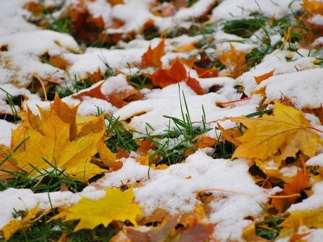 Всю неделю вКирове будет идти снег сдождем 0+