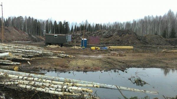 ВКировской области ищут альтернативную площадку для полигона ТБО