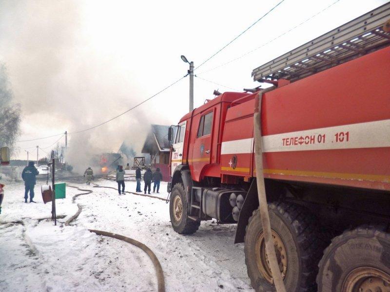 ВЛузском районе напожаре погибли мать сдочкой