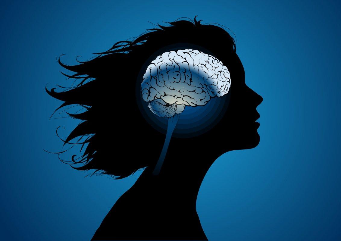 Ученые: Иммунные клетки мозга человека обновляются шесть раз