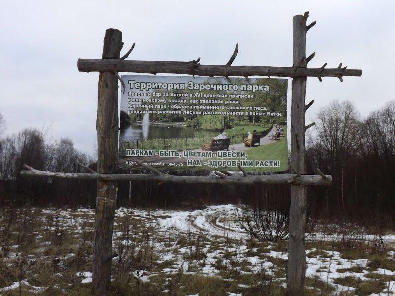 ВКирове на2 месяца объявили карантин побешенству