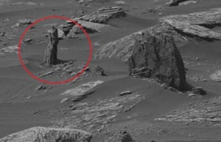 Ученые обнаружили наМарсе окаменевший ствол дерева