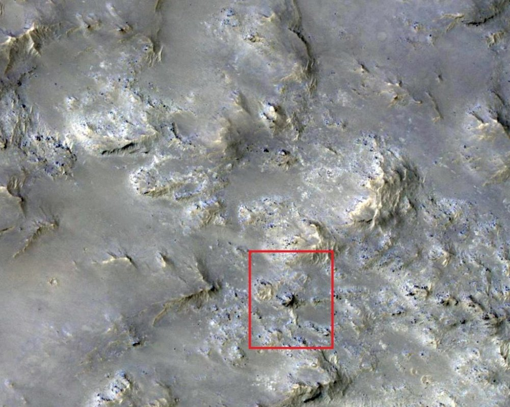 НаМарсе найдены останки неизвестного животного