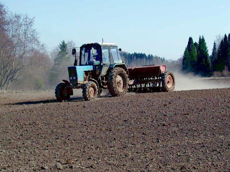ВКировской области аграриям возместят вред залетние посевы