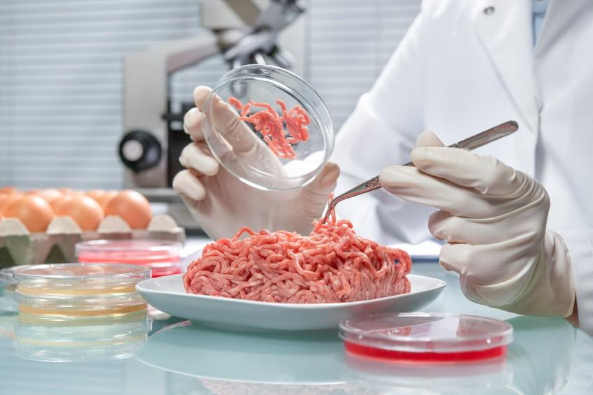 Вдетских коллективах Рязанщины проверили качество питания
