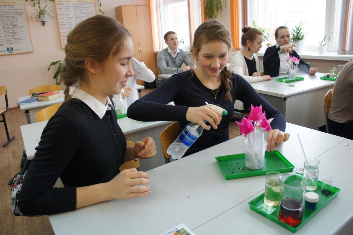 урок химии в школе картинки сырьё